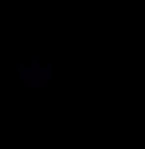 Logo miniatura Naturbrush