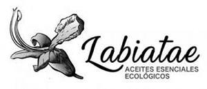 Labiatae